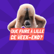 Que faire à Lille ce weekend